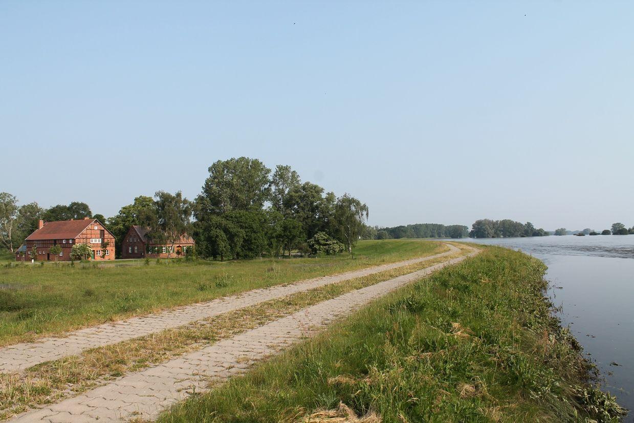 Die Elbe mit Hochwasser ein paar hundert Meter vom Flusshof entfernt.